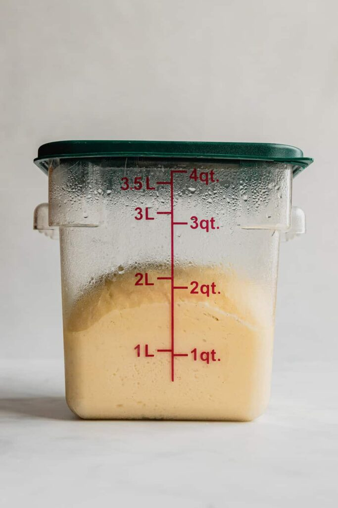 Cinnamon roll dough in a large plastic container after it has risen overnight.